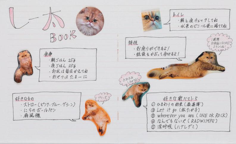 愛猫の留守番ノート