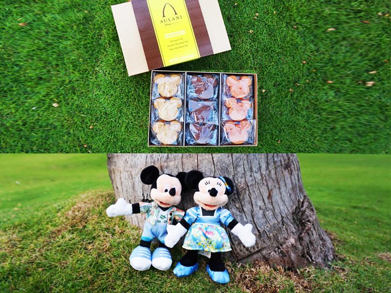 アウラニ限定クッキー アロハシャツを着たミッキーとミニーのぬいぐるみ