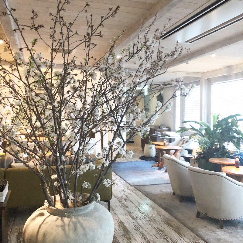桜の木が飾られている