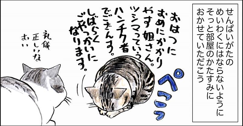 『俺、つしま』3