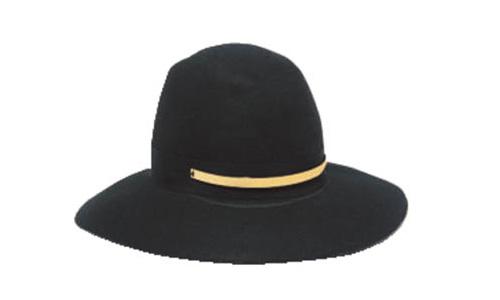 黒のつば広女優帽