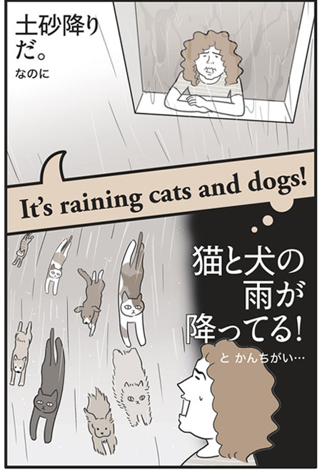 「It's raining cats and dogs!」の意味は…「土砂降りだ。」