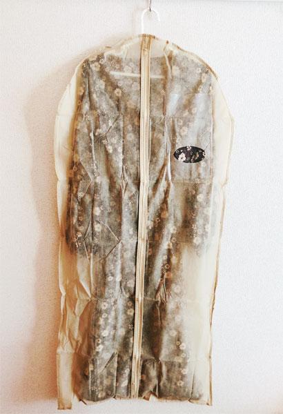 ドレス収納袋(キャンドゥ)