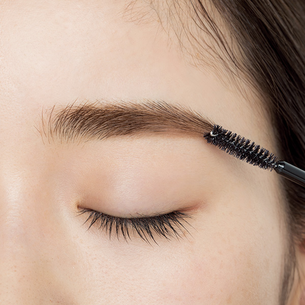 【STEP 7】眉頭以降は毛流れに沿ってとかす