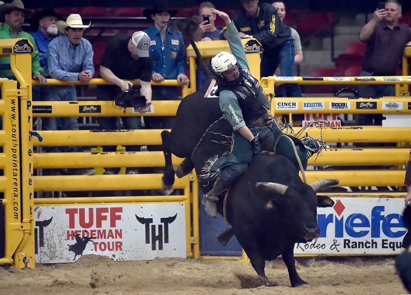 Bull Riding(ブルライディング) Tuff Hedeman Bull Riding Tour