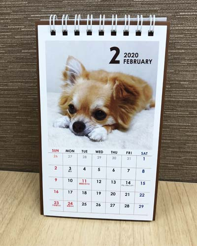 カレンダー 2020 卓上タテ型 イヌ(セリア)
