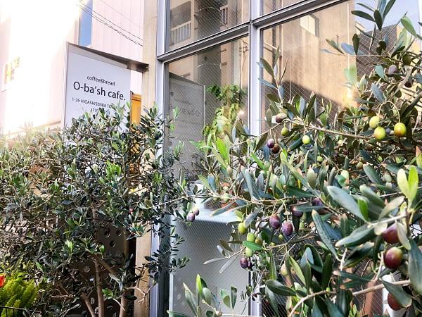 オリーブの木が印象的な外観