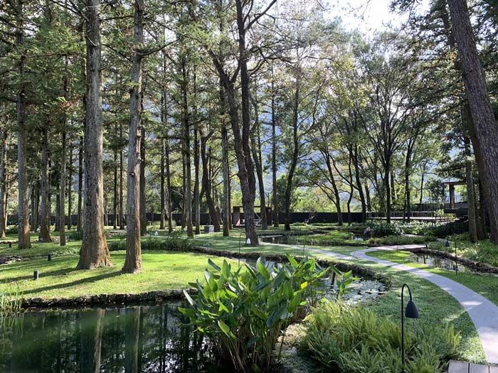 水の庭「ウォーターガーデン」
