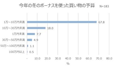 今年の冬のボーナスを使った買い物の予算 結果グラフ